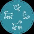 cropped-nouveau-logo-chien-chat.png