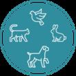 nouveau logo chien chat
